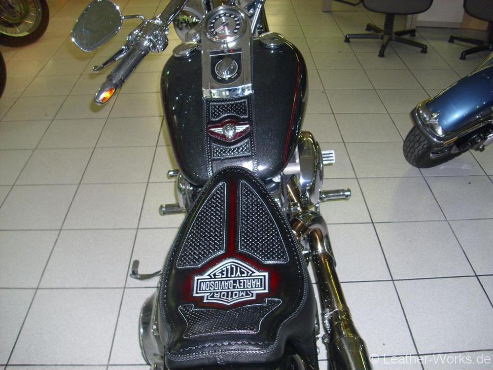 DSCI08100